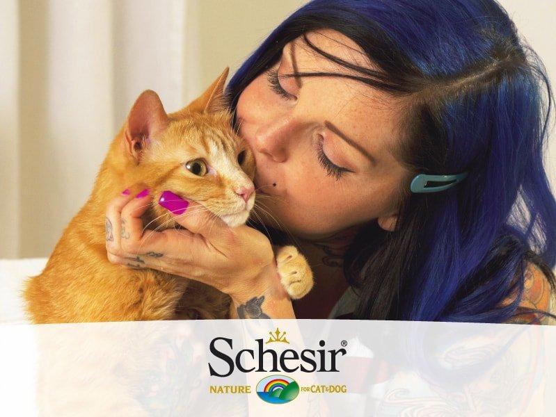 Come ricevere gratis crocchette Schesir per il vostro gatto